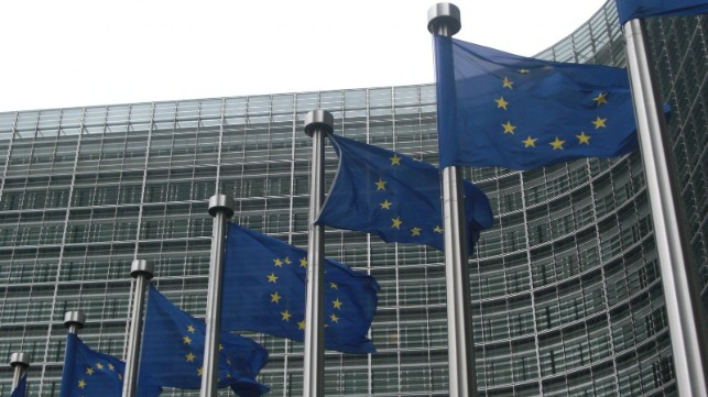 Trafigura, T&E y DFDS piden a la UE que apoye el amoníaco y el hidrógeno