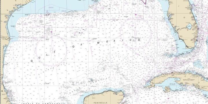 La 'zona muerta' del golfo de México se encogió un poco